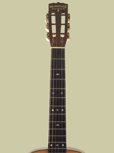 Washburn Deluxe Guitar